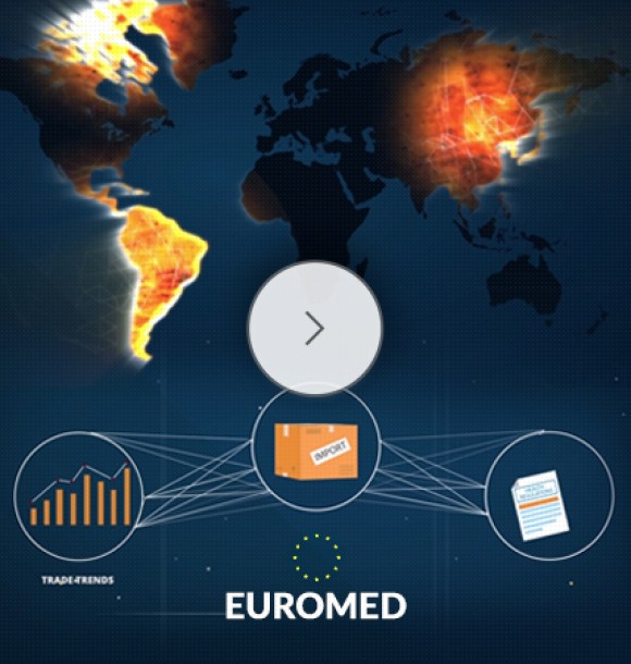 euromed video consulting services