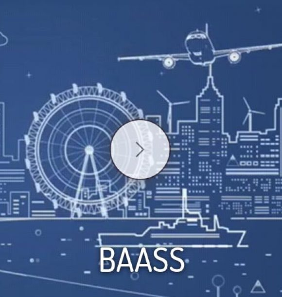 baass consulting services